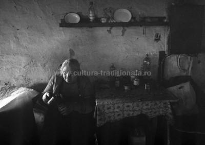 Bogdan Boghitoi - Testul palincii - Urmenis