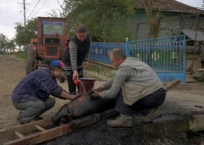 Costas Dumitrescu - Spalatul - porcului - Soconzel