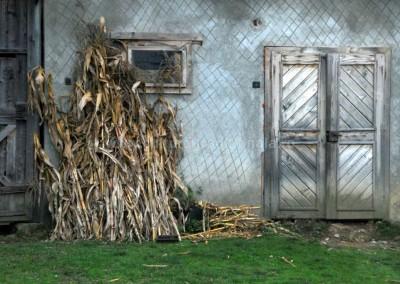 Dorel_Gaina - Poarta grajdului