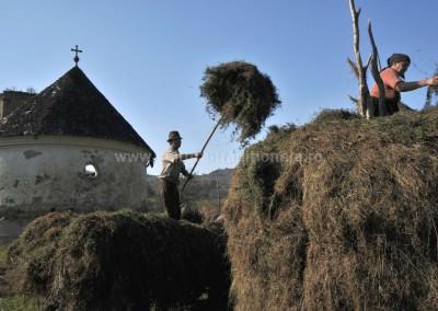 Felician_Sateanu - Facutul claii - Ungureni