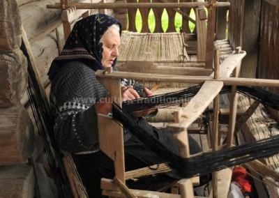 Felician_Sateanu - Indeletniciri casnice - Giulesti