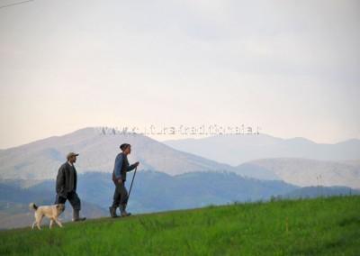 Felician_Sateanu_-_Pastorii