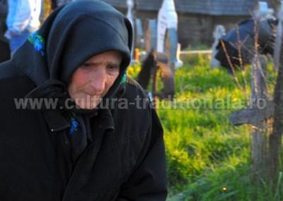 Felician_Sateanu_-_Tristete_-_Botiza