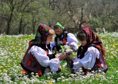 Gheorghe_Petrila - Poiana cu flori - Sat Sugatag
