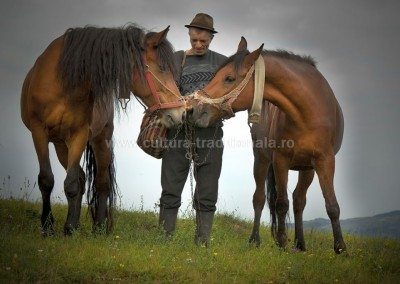Ionel_Onofras - Vasile si caii lui - Sacel