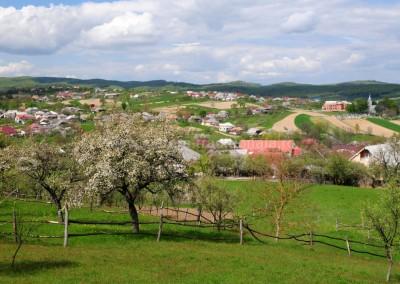 Panorama_Barsau_de_Sus