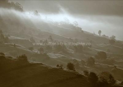 Radu_Oltean - Peisaj in neguri - Bocicoel