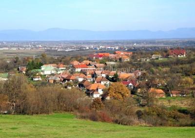 Sateanu Felician - Panorama - coperta 1