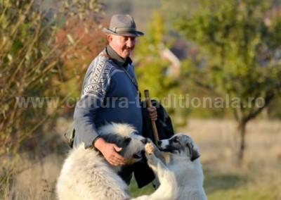 Gheorghe Petrila - Ciobanul si caini sai - Remeti