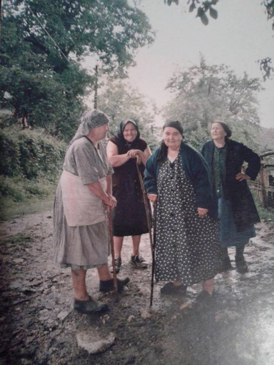 Cercetare de teren – Curtuiușu Mare (I/2017)