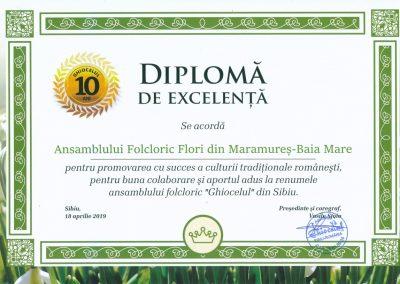 diploma_flori_mm
