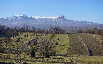 Cercetare de teren în Breb 02-03-2021